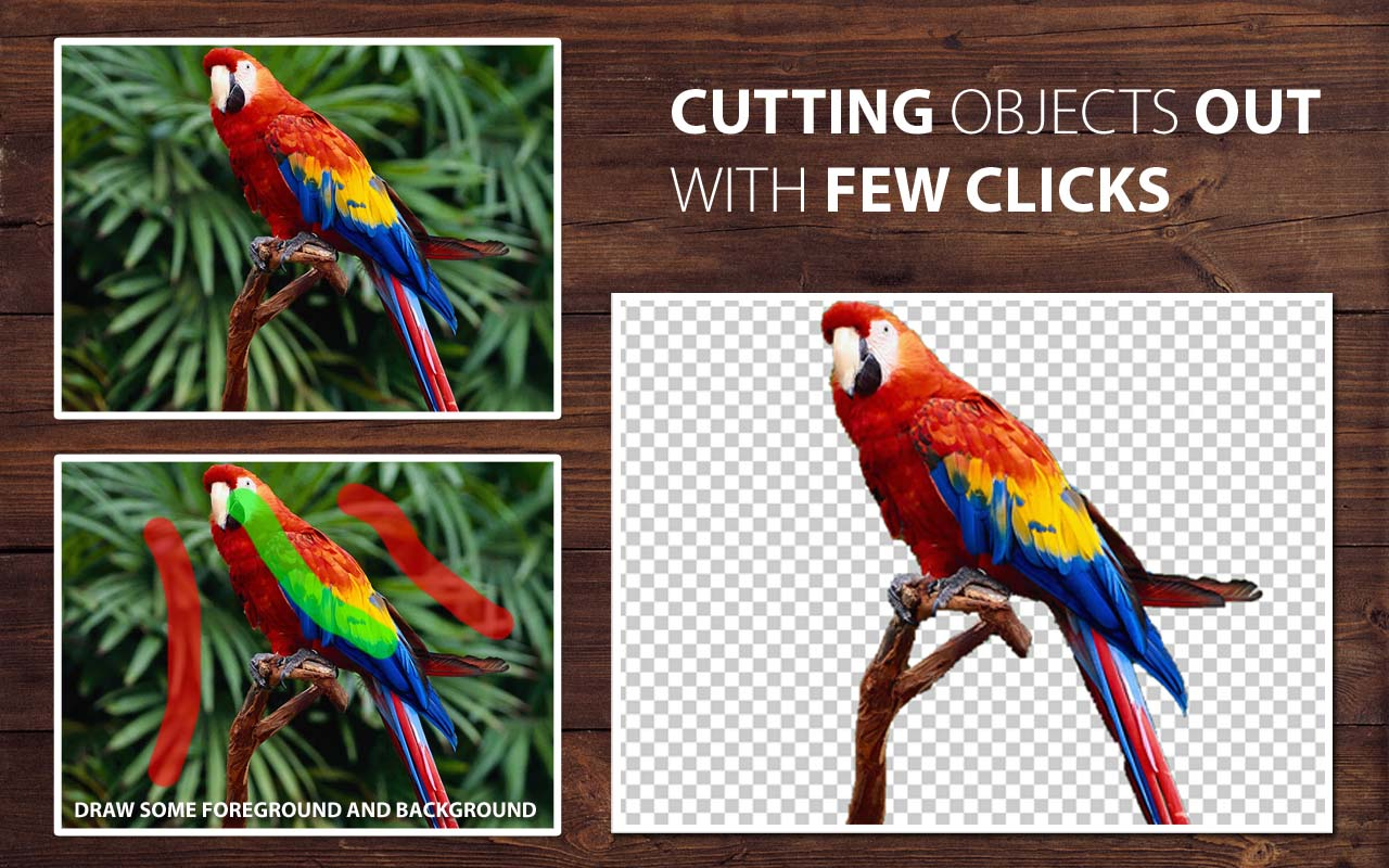 Cut out objects with a Few Clicks